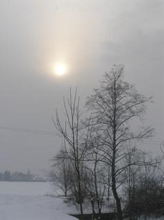 FOTKA - Slunce v zimě