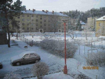 FOTKA - Úterý 16.3.2010