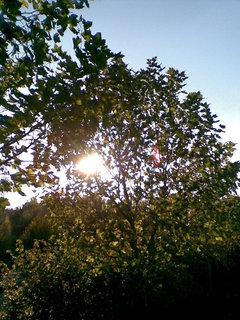 FOTKA - Podzim 2
