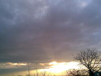 FOTKA - Slunce 29