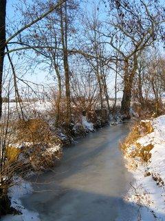 FOTKA - Zamrzlý Náhon