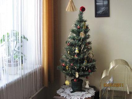 FOTKA - Náš vánoční stromeček