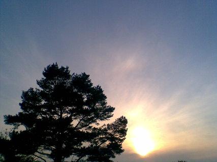 FOTKA - Slunce 39