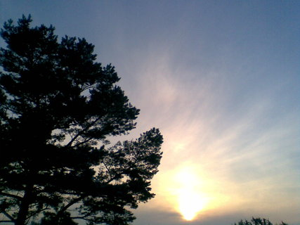 FOTKA - Slunce 40