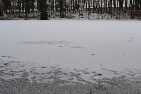 FOTKA - Dolní rybník