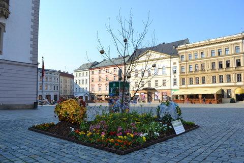 FOTKA - Olomouc,,,,,,,,