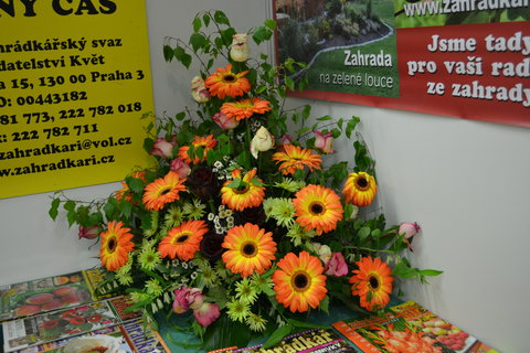 FOTKA - Flora 3................
