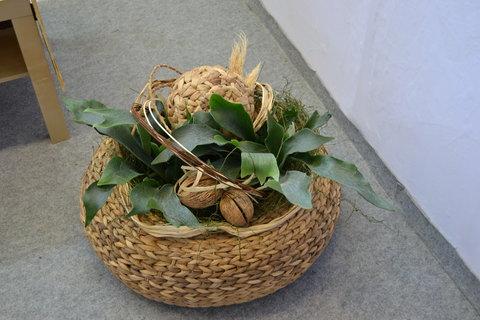 FOTKA - Jarní Flora 4,,,,