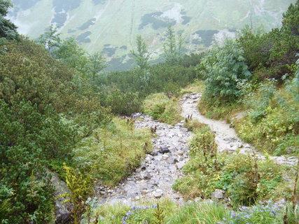 FOTKA - Smutnou dolinou k Ťatliakově chatě