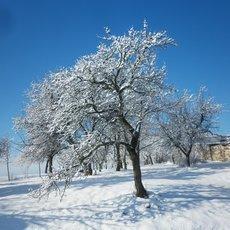 hurá sníh