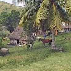 Cestománie: Fidži – zemí bývalých lidožroutů