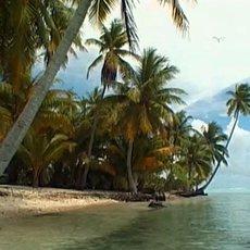 Cestománie: Francouzská Polynésie – Tahiti – Nebe na zemi