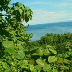 Cestománie: Vanuatu – Děti ráje