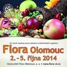 Flora Olomouc 2014