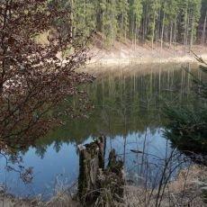 Knížecí studánky u Dobříše, aneb hurá do lesů