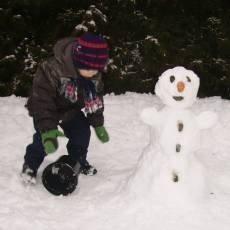 iris-snehulak