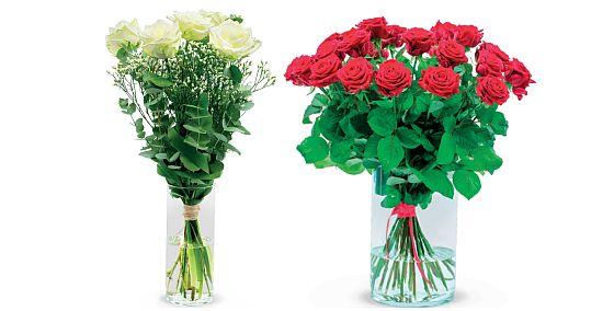 růže - sv. Valentýn
