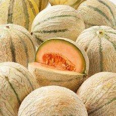 Meloun mnoha tváří