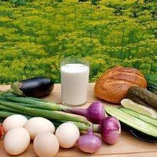 Průvodce alternativními styly stravování