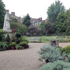 Kouzelné bylinky - Zelené království anglické