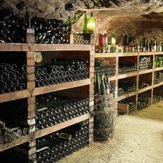 Jak se správně skladovat víno