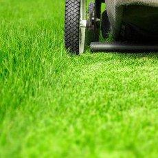 4 nejčastější chyby při práci se zahradní sekačkou