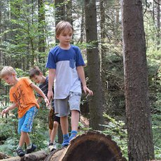 děti v lese