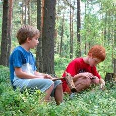 houbaření s dětmi