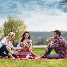 Co jste nevěděli o pikniku?