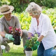 Jak připravit zahradu na teplé dny