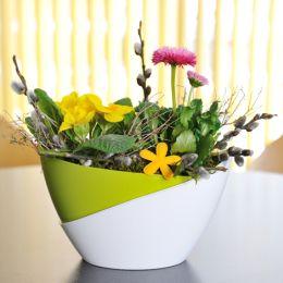 jarní výsadba květin