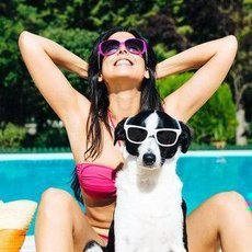 Jak si užít pohodové léto se psem