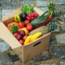 Šest rad, jak vybírat ovoce a zeleninu v obchodě