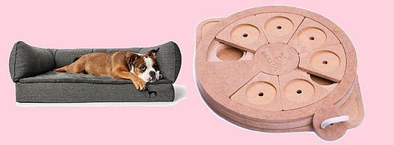 Spokojený pes - hračky