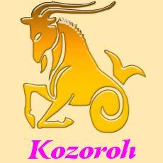 Kozoroh- horoskop na rok 2017