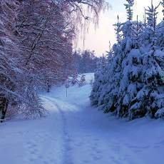 Ladovská zima Jaromíra Nohavici