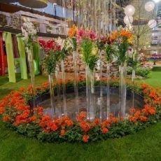 Letní zahradnická Flora Olomouc 2014