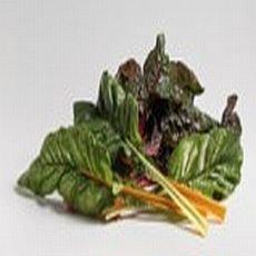 zelenina-jako-lek-mangold