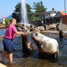 zájezd do Holandska