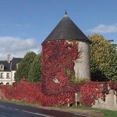 Na cestě po Calvadosu