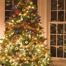 Jak vybrat vánoční světelný řetěz?