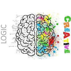 Za to, že neumíte kreslit, nemůžou hemisféry aneb 10 mýtů o našem mozku