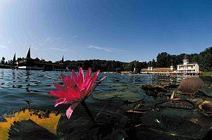 jezero Hevíz