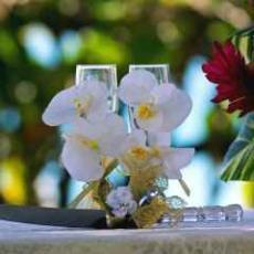 svatba na zelené louce