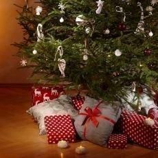 Jak se vyhnout během Vánoc nemocem