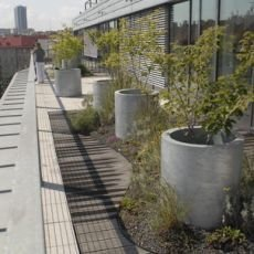 zahrada-na-strese