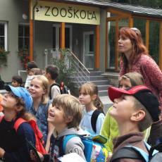 Aktuální prázdninové akce v ZOO Děčín