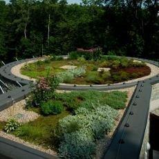 Střešní zahrada pavilonu Čitván