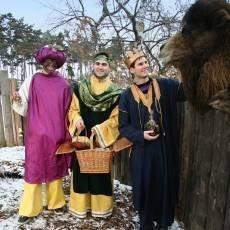 zoo-praha-trikralove-foto
