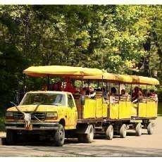 Večerní projížďky Safari expresem již tento víkend